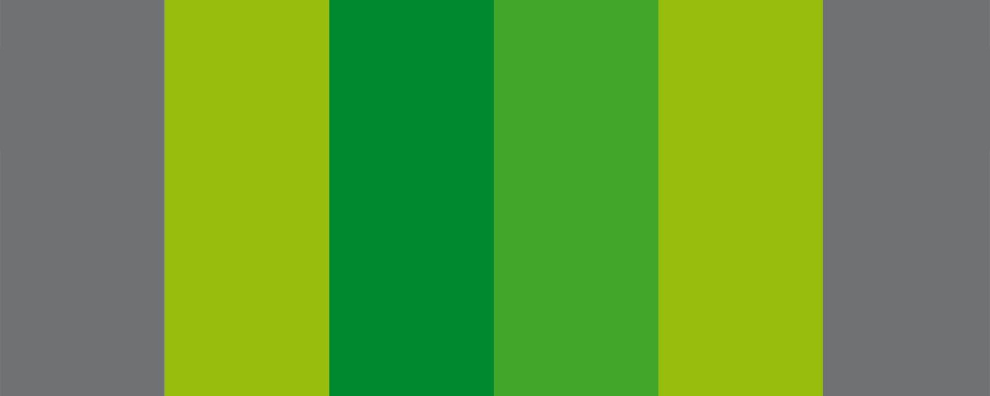 MercatTeia_Logo_2
